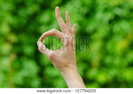 Spring And Nature Theme: Man's Hand Showing Gesture On A Background Of Green Grass In The Spring, Fi