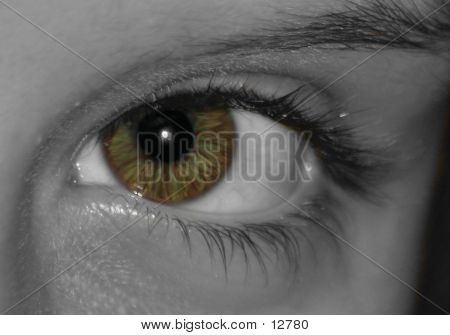 Eye So Bright