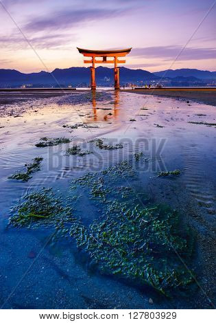 The floating Torii Gate at sunset Miyajima island Hiroshima Japan
