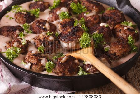 Kottbullar Swedish Meatballs With Cowberry Sauce Macro. Horizontal