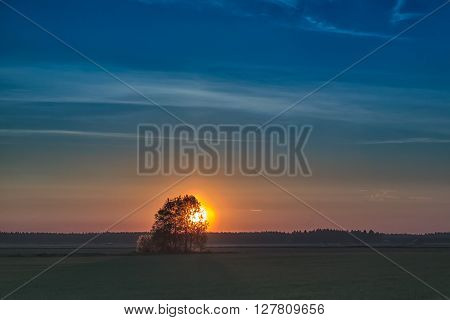 Sun Sets Behind The Trees