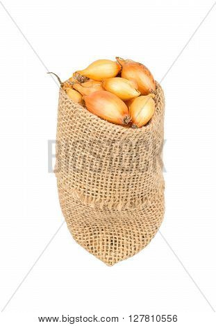 Seeds Of Onion In The Bag