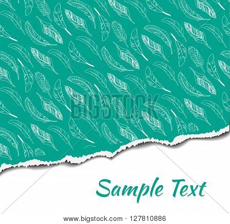 Vector illustration of ripped paper with place for your image or text. Ripped seamless pattern.