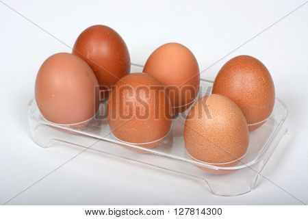 Six free range eggs in a plastic fridge holder against a white background.
