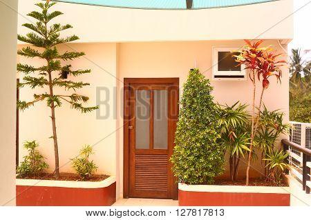 interior of thai condominium with box plants tree and bush beside the door