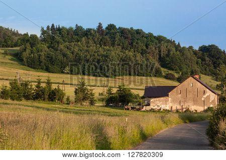 Western Sudetes, Kaczawskie Mountains, Village Swidnik, Poland, Lower Silesia Region. The month of June.