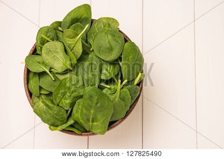 Spring spinach leaves in the bowl. White wooden background