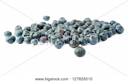 Ripe bilberry or blueberry over isolated white background ** Note: Shallow depth of field