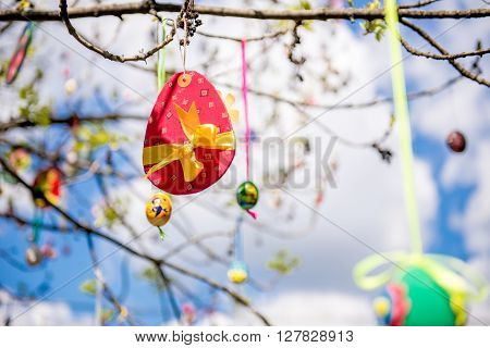 Several Easter colored eggs hanging on a tree branch color sunny spring day. Easter