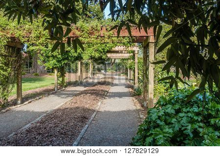 A view of a walkway under wooden arbors at Point Defiance Park in Tacoma Washington.