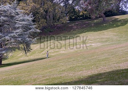A solitary man lost in thought walking up a grass against a background of trees