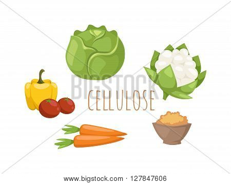 Vegetables food cellulose vector set. Cabbage, peppers, tomatoes, carrots, porridge cellulose isolated on white background. Healthy food cellulose concept. Cellulose vegetables set.