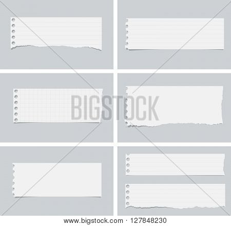 Pieces of ripped white lined, squared and blank notebook paper are stuck on gray background.