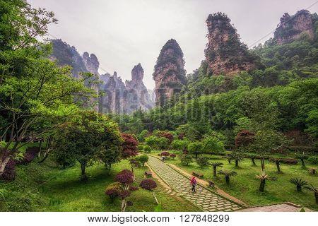 Yuanjiajie National Forest Park