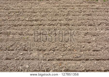 land plowed furrows for planting crops horizontal line