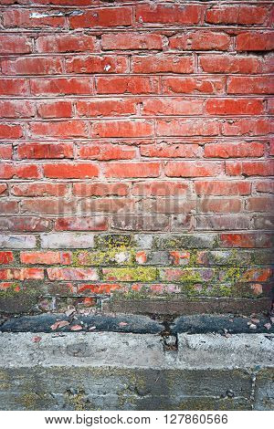Old red brick wall vertical texture with part of concrete basement beneath and spot of dry lichen or moss