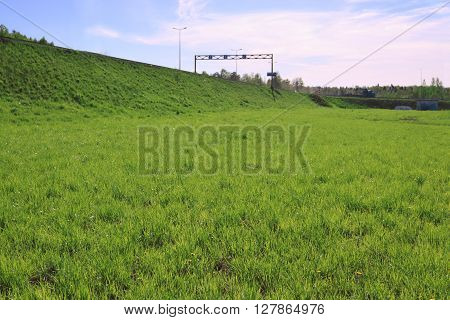 Fresh bright green lawn and road on hill at summer sunny day