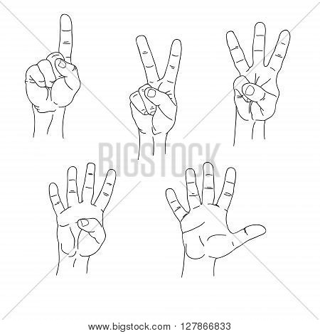 Set of hands counting one to five inner side lineart