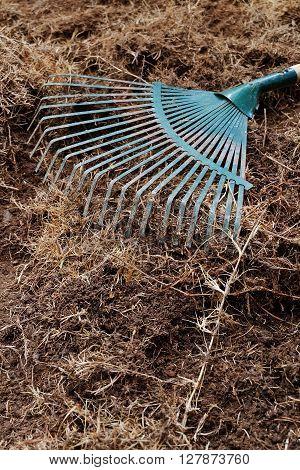 yard work in garden with rake shoveling dry grass
