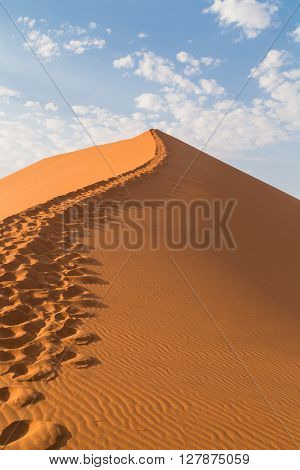 Sand Dune 45 in Sossusvlei Namibia. Desert landscape. Take a walk into the sand dunes.