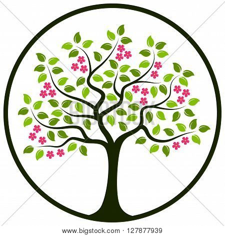 vector flowering tree in round isolated on white background
