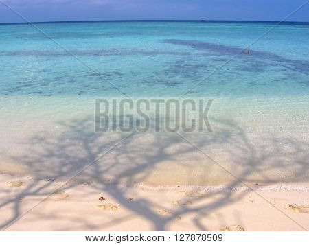 Maldives background, Atoll, Indian Ocean. Palm shadows on the white sand beach. Turquoise water of the lagoon. Asdu in Male North.
