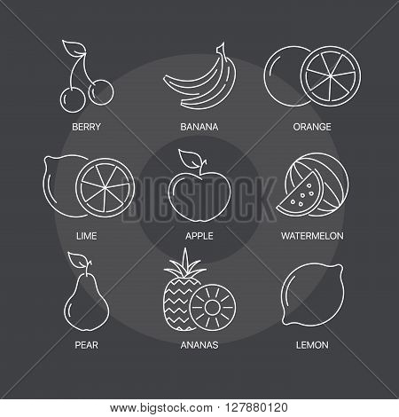 Organic fruit thin line icons set on dark background. Exceptional elegant linear logo concept. 