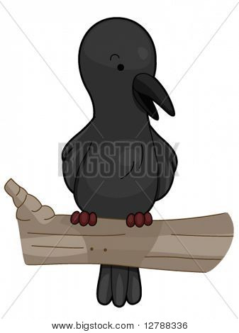 A Little Crow Perched on a Branch - Vector
