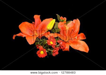 Flowers Orange Red Arrangements
