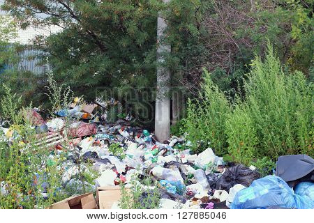 Garbage dump among green trees and buches at summer day