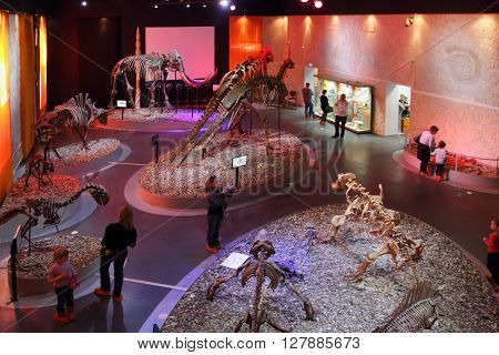 PERM RUSSIA - APR 4 2015: People and skeletons of dinosaurs in Museum of Local History
