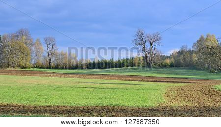 view of the spring countryside South Bohemia Czech Republic