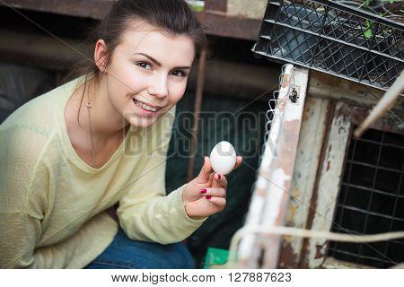 Farmer Woman Holding Chicken Egg In Henhouse