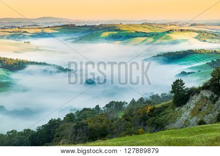 Scenic Tuscan Landscape Flooded in Morning Fog