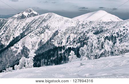 Winter In Mala Fatra Mountains, Slovakia