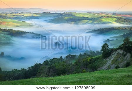 Morning Fog in Fresh Green Tuscan Valley Summer Landscape