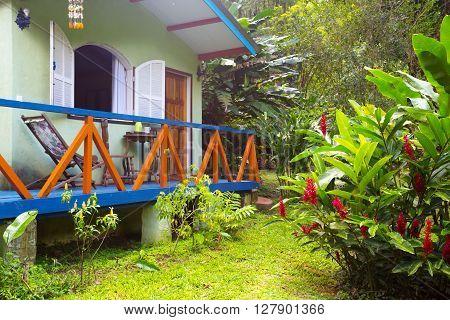 Brazil traditional house. palm trees in the garden Brasil