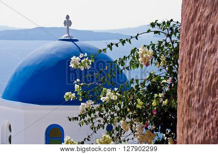 Church dome and flowers in Oia, on the Greek island of Santorini