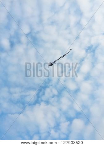 Flying Kite in the blue sky, blue sky and clouds, children' kite silhouette, fly in the sky, photo of kite flight, kite with long tail silhouette, summer activity, kite hobby, alone in sky, cloudy sky