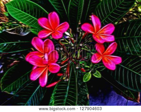 Digital illustration - Red flowers frangipani plumeria, experimental pink blur light, frangipani illustration, tropical garden illustration for digital design, exotic flower in neon light, tropic tree
