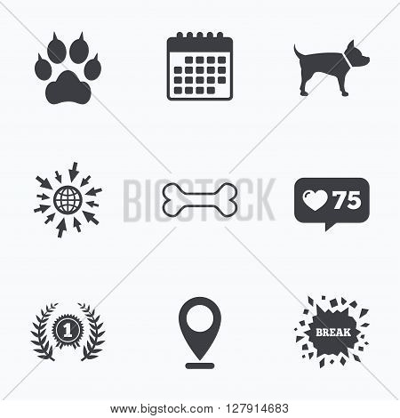Calendar, like counter and go to web icons. Pets icons. Cat paw with clutches sign. Winner laurel wreath and medal symbol. Pets food. Location pointer.