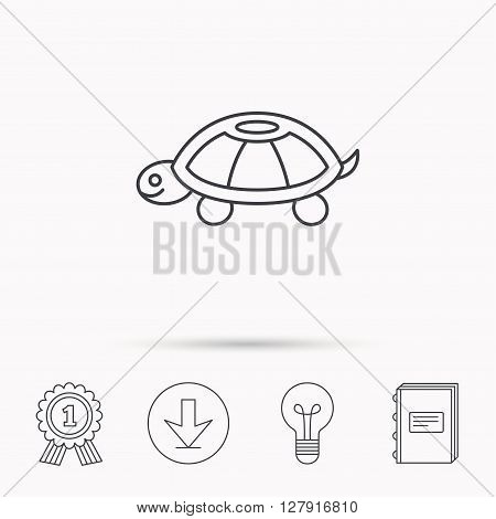 Turtle icon. Tortoise sign. Tortoiseshell symbol. Download arrow, lamp, learn book and award medal icons.