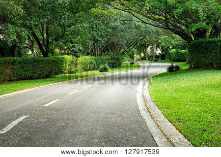 Beautifully Curving Hedge Lined Road