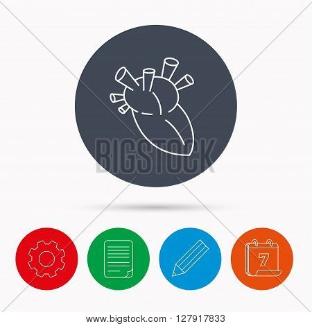 Heart icon. Human organ sign. Surgical transplantation symbol. Calendar, cogwheel, document file and pencil icons.
