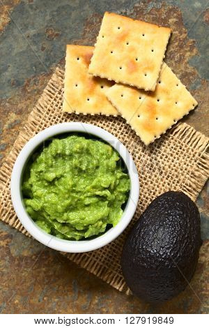 Fresh avocado cream or guacamole with soda crackers on the side photographed overhead with natural light (Selective Focus Focus on the top of the avocado cream)