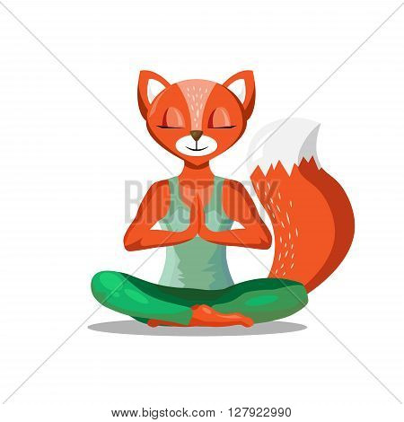 The fox yoga flat vector. Cartoon fox sitting. Sport and relaxation. Yoga vector illustration. Yoga animal. Yoga fox - stock vector.