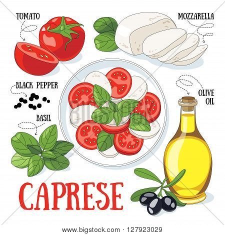 Caprese traditional italian salad and its ingredients. Mediterranean cuisine.