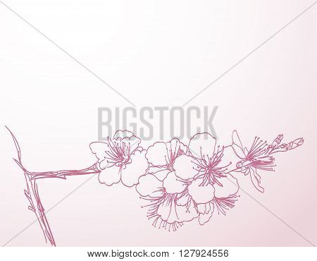 blossoming tree line art hand drawing. spring stylish horizontal background with pink plum flowers outline vector