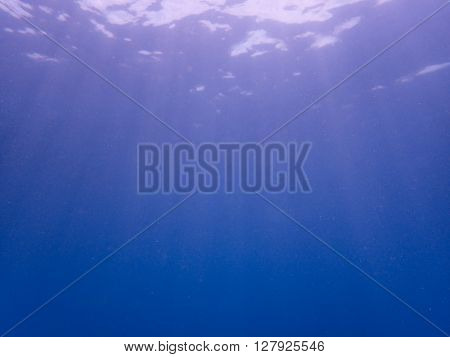 Under seawater and sunlight shading in the ocean