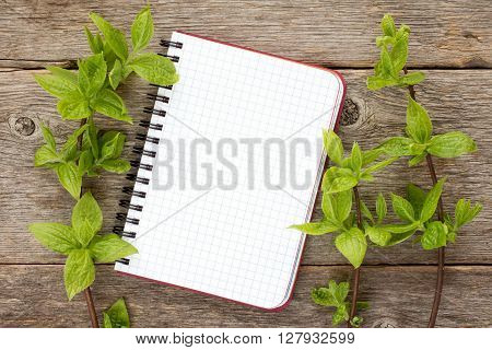 Green plants and blank notebook on wooden background. Copy-space.